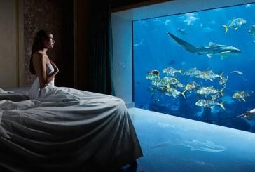 hydropolis underwater resort hotel. Hotel-Hotel Unik Di Dunia Bawah Air Hydropolis Underwater Resort Hotel